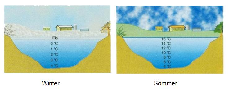 Anomalie Des Wassers