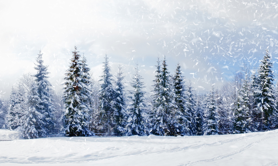Neues vom Weihnachtswetter? - Wetterdienst.de